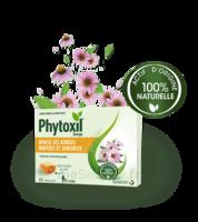 Phytoxil Pastilles Gorge Pastilles Adulte Enfant +12 Ans B/20 à Saint-Cyprien