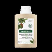 Klorane Beurre Cupuaçu Bio Shampoing Cheveux Très Secs 200ml à Saint-Cyprien