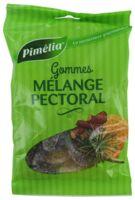 Pimelia Gommes Mélange Pectoral Sachet/100g à Saint-Cyprien