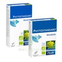 Pileje Phytostandard - Rhodiole 20 Gélules Végétales à Saint-Cyprien