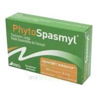 Phytospasmyl Caps B/60 à Saint-Cyprien