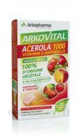 Arkovital Acérola 1000 Comprimés à Croquer B/30 à Saint-Cyprien