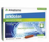 Arkocean Magnesium Marin Solution Buvable Caramel 20 Ampoules/10ml à Saint-Cyprien