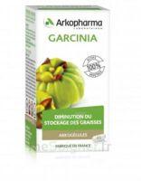 Arkogélules Garcinia Gélules Fl/45 à Saint-Cyprien