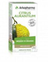 Arkogélules Citrus aurantium Gélules Fl/45 à Saint-Cyprien
