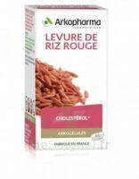 Arkogélules Levure de riz rouge Gélules Fl/45 à Saint-Cyprien
