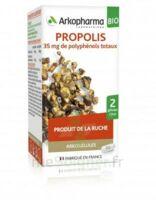 Arkogélules Propolis Bio Gélules Fl/45 à Saint-Cyprien
