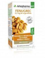 Arkogélules Fenugrec Bio Gélules Fl/40 à Saint-Cyprien