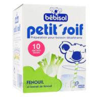 Bébisol Petit'Soif Fenouil x10 à Saint-Cyprien