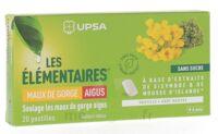 Les Elémentaires Sans Sucre Pastilles Maux De Gorge Aigus Menthe B/20 à Saint-Cyprien