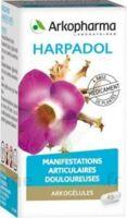 ARKOGELULES HARPAGOPHYTON, 150 gélules à Saint-Cyprien