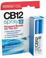 CB 12 Spray haleine fraîche 15ml à Saint-Cyprien