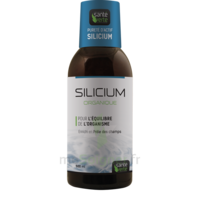 Santé Verte Silicium Solution buvable Fl/500ml à Saint-Cyprien