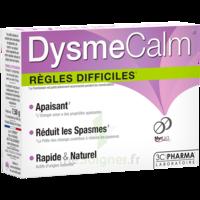 Dysmecalm Comprimés B/15 à Saint-Cyprien