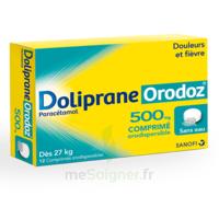 Dolipraneorodoz 500 Mg, Comprimé Orodispersible à Saint-Cyprien
