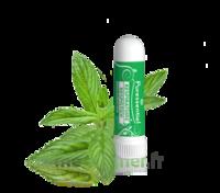 Puressentiel Respiratoire Inhaleur Respiratoire Aux 19 Huiles Essentielles - 1 Ml à Saint-Cyprien
