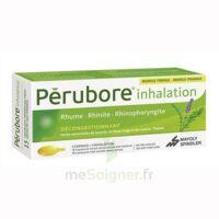 PERUBORE Caps inhalation par vapeur inhalation Plq/15 à Saint-Cyprien