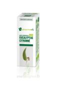 Huile essentielle Bio Eucalyptus Citronné à Saint-Cyprien