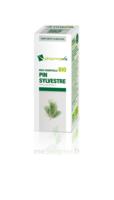 Huile essentielle Bio Pin sylvestre  à Saint-Cyprien