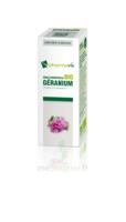 Huile essentielle Bio Géranium  à Saint-Cyprien