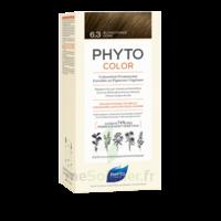 Phytocolor Kit Coloration Permanente 6.3 Blond Foncé Doré à Saint-Cyprien