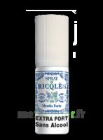 Ricqles Spray buccal sans alcool menthe 15ml à Saint-Cyprien