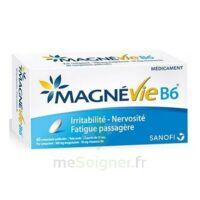 Magnevie B6 100 Mg/10 Mg Comprimés Pelliculés Plaq/60 à Saint-Cyprien