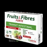 Ortis Fruits & Fibres Forte Cube à mâcher B/24 à Saint-Cyprien