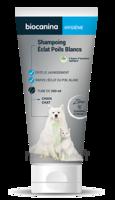 Biocanina Shampooing éclat Poils Blancs 200ml à Saint-Cyprien