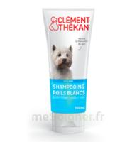 Clément Thékan Shampooing Poils Blancs T/200ml à Saint-Cyprien