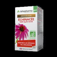 Arkogelules Echinacée Bio Gélules Fl/45 à Saint-Cyprien