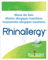 Boiron Rhinallergy Comprimés B/40 à Saint-Cyprien