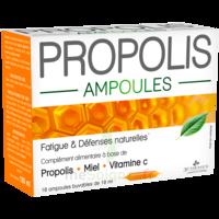 3 Chenes Propolis Solution Buvable 10 Ampoules/10ml à Saint-Cyprien