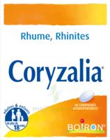 Boiron Coryzalia Comprimés Orodispersibles à Saint-Cyprien